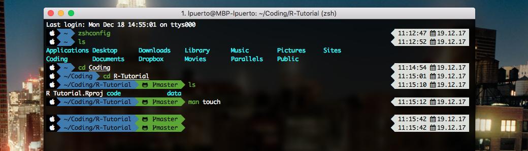 iTerm2 + Oh My Zsh + Powerlevel9k + Monaco Nerd Complete Font | Luis